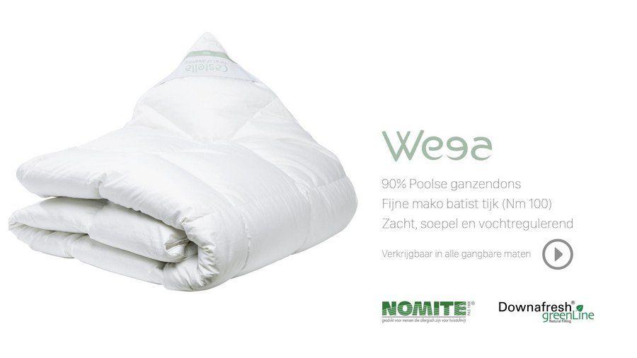 Castella Wega Winter Dekbed Dons